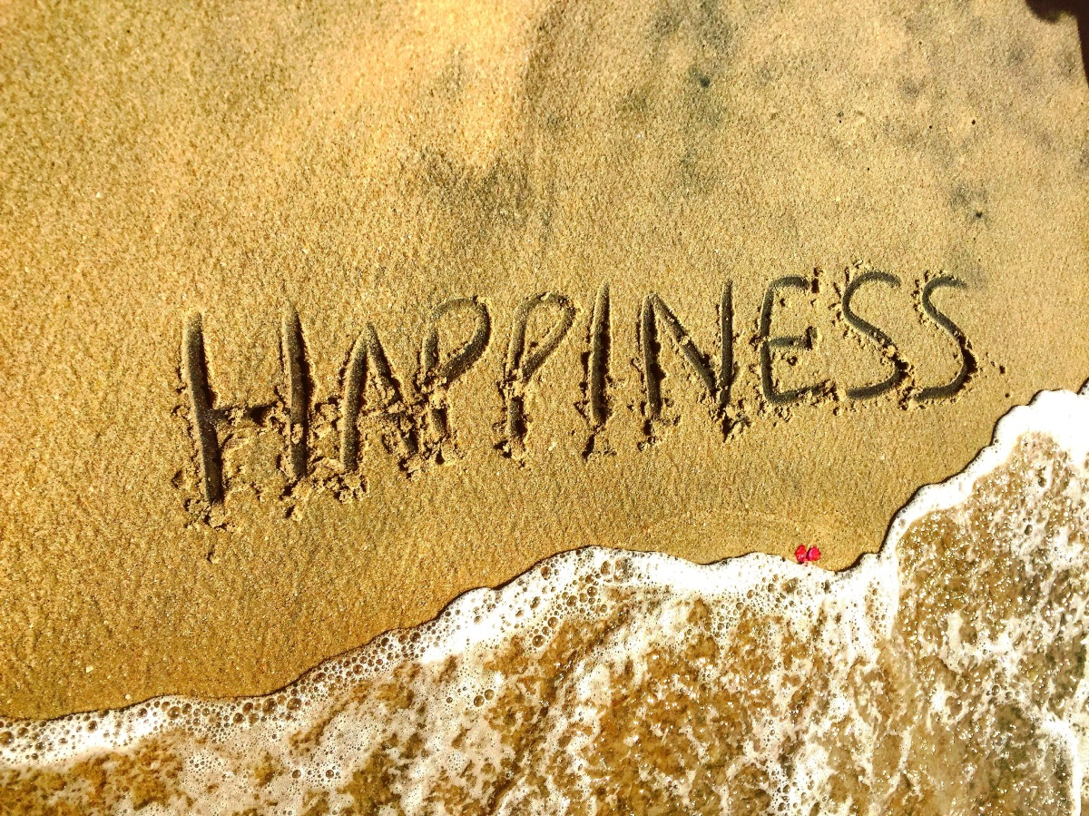 Happiness:The Spirit Of2016