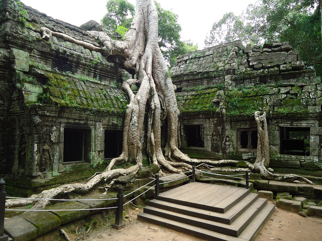 The Magnificent Ruins of Ta Prohm