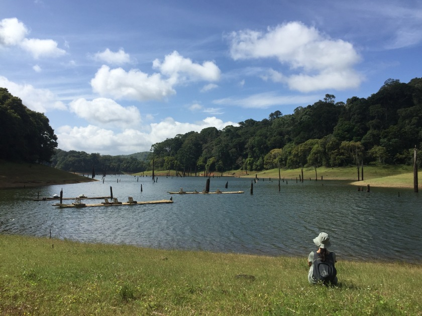 Trekking in Periyar forest, I sat by the river to learn the stilness from natureRiver.jpg